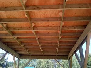 Protecting Barn Swallows   Highway 407